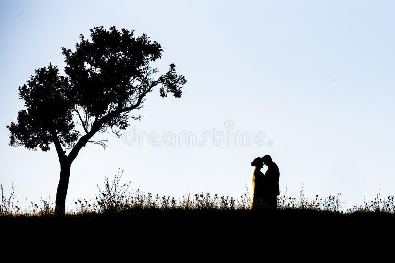Verbinden Sie Schattenbilder auf einem Hügel stockfotos