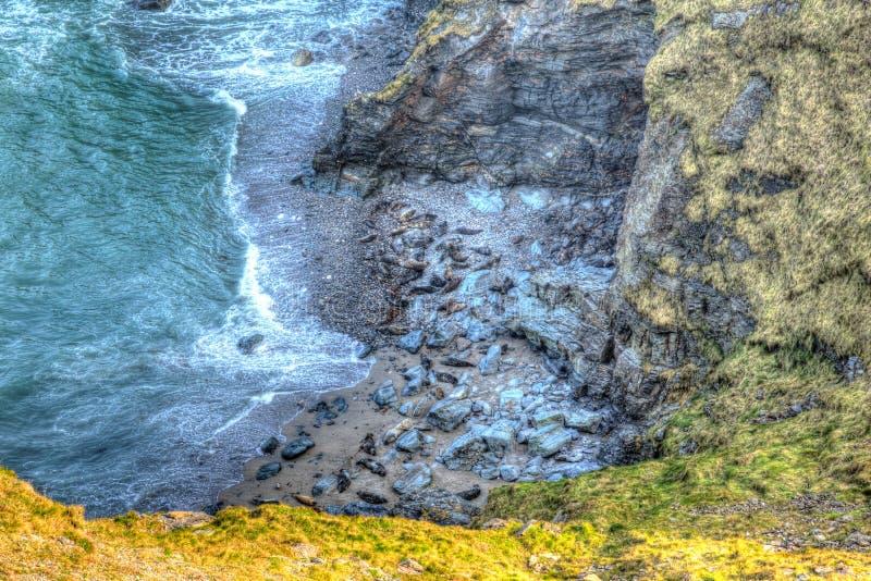 Verbindingen op het strand in Schaapinham dichtbij de kust Engeland het UK van Godrevy St Ives Bay Cornwall in HDR stock foto's