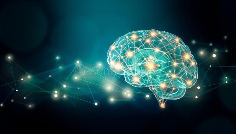 Verbindungsillustration des menschlichen Gehirns mit abstrakten Hintergrund- und Plexuslinien Netz und Kopienraum vektor abbildung