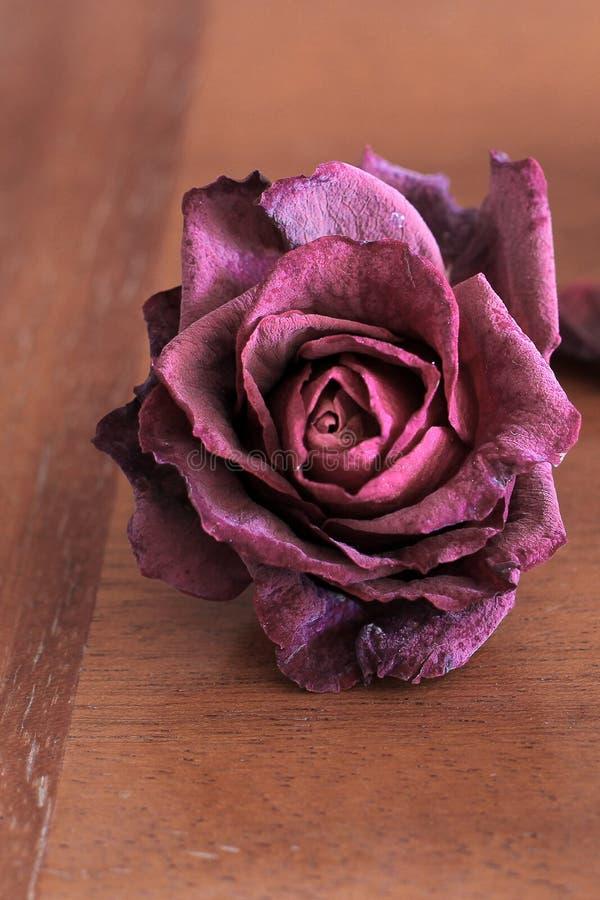 Verbla?te Rosen auf einem h?lzernen Hintergrund lizenzfreie stockfotos