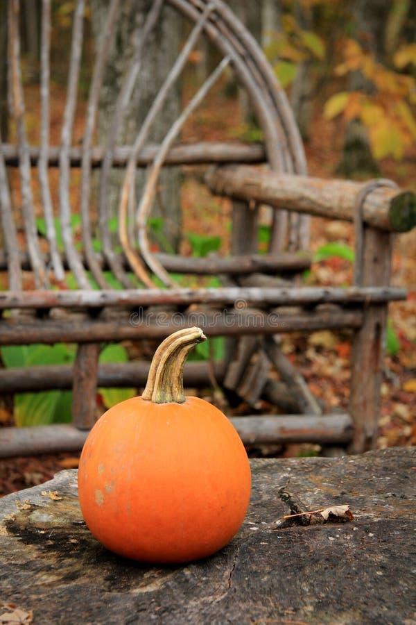 Verbogener Weide-Stuhl im Herbst stockfotografie