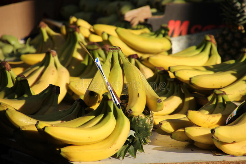 Verborgen ananas royalty-vrije stock afbeelding