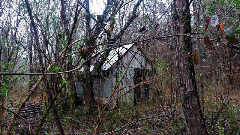 Verborgen hut in het bos royalty-vrije stock fotografie