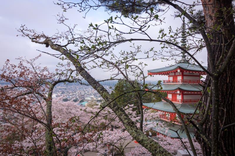 Verborgen Japanse Tempel in Sakura stock afbeeldingen