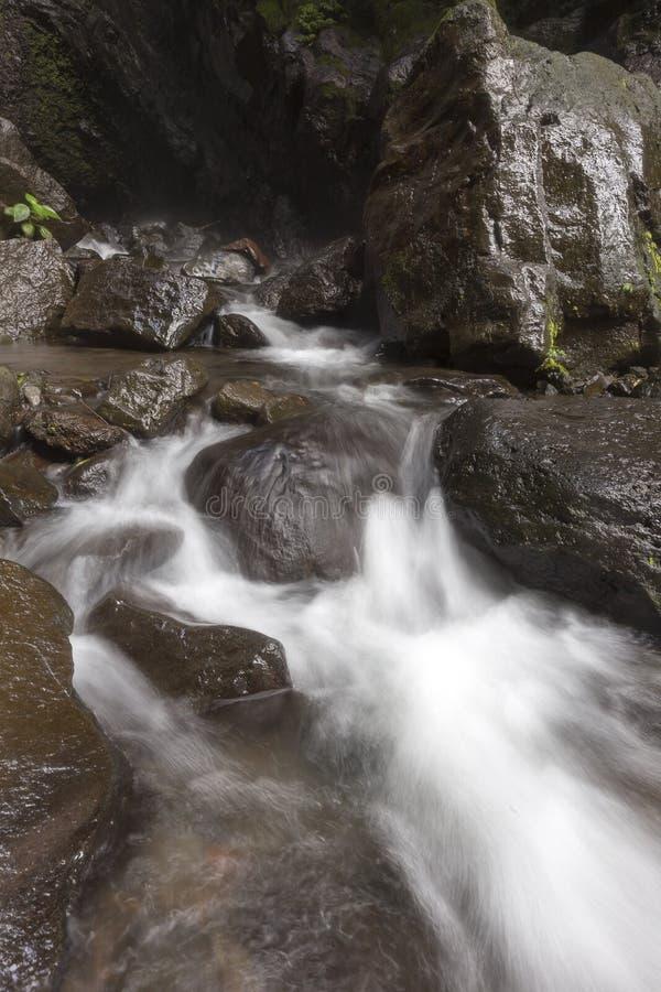 Verborgen mooie watervallen in Noord-Bali royalty-vrije stock afbeeldingen
