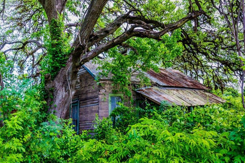 Verborgen Oude Verlaten Keet in Texas stock afbeeldingen