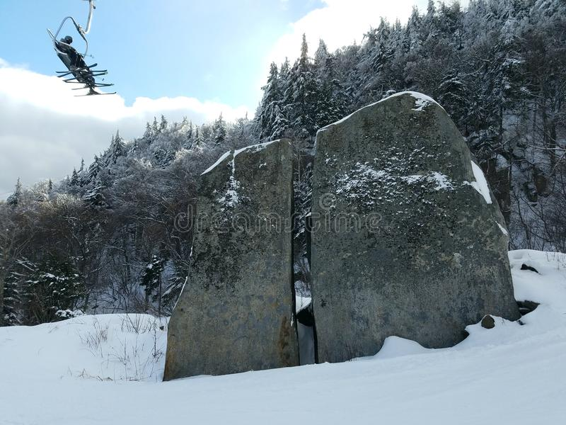 Verborgen schoonheid in de sneeuw stock afbeeldingen
