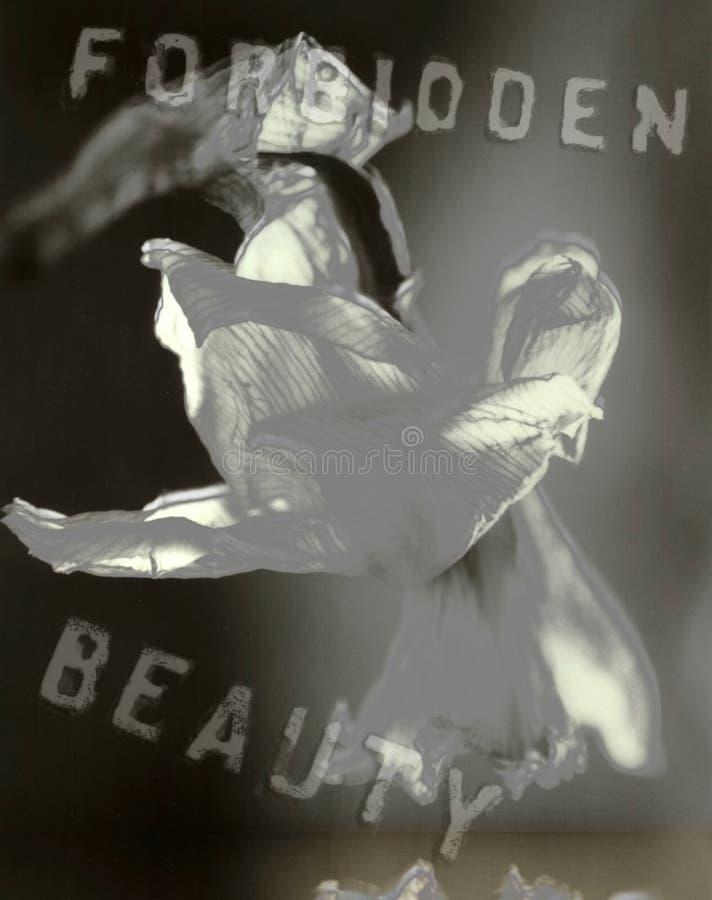 Verbotene Schönheit stock abbildung