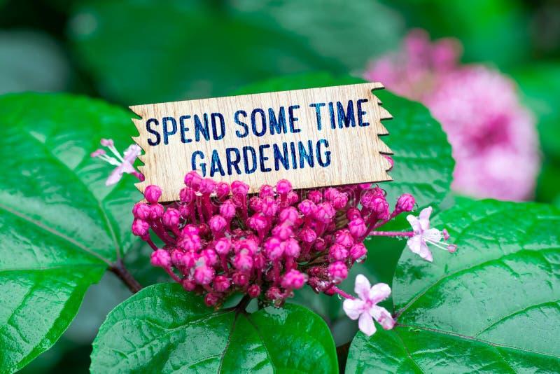 Verbringen Sie einige Zeit, die in der hölzernen Karte im Garten arbeitet stockfoto