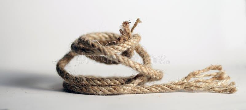 Verbundenes Seil auf weißem Hintergrund lizenzfreies stockbild