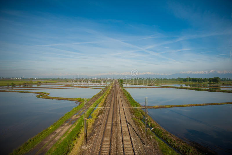 Vercelli ryż pola zdjęcie stock