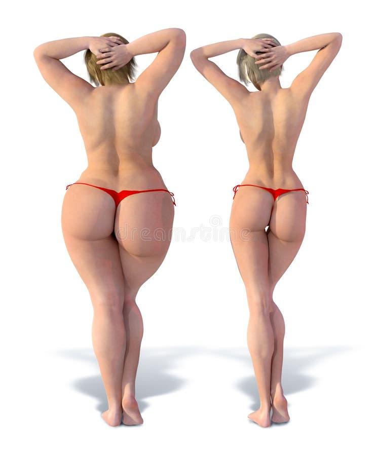 Verdünnen Sie gegen Fett von hinten vektor abbildung