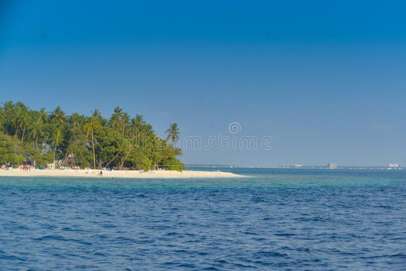 Verdadeiramente Maldivas imagens de stock