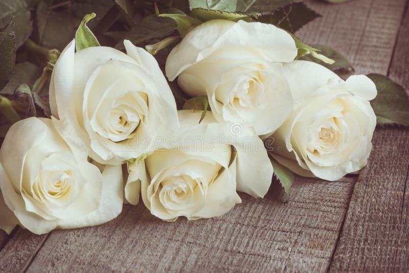 Verdaderas rosas blancas suaves como fondo neutral en el tablero de madera Foco selectivo Imagen entonada foto de archivo libre de regalías