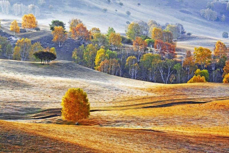 Verdammungs-Herbst in Innere Mongolei lizenzfreies stockbild
