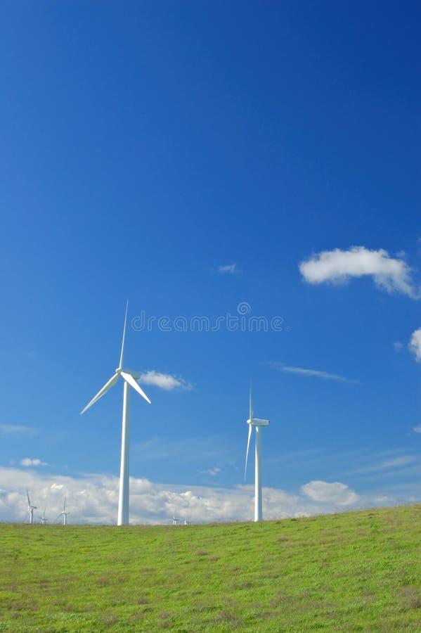 Download Verdant Hillside Stock Image - Image: 642971
