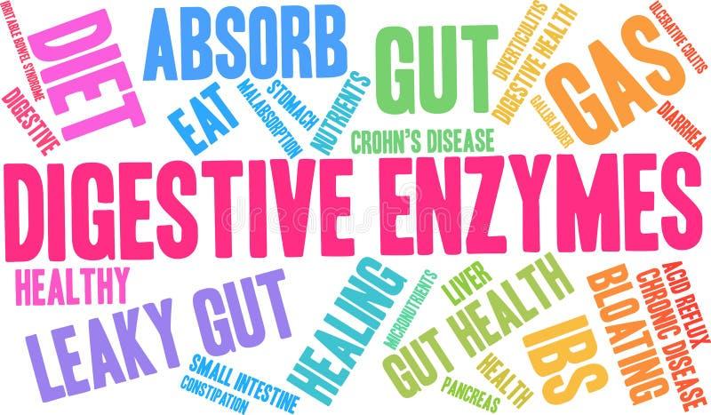 Verdauungsfördernde Enzym-Wort-Wolke lizenzfreie abbildung