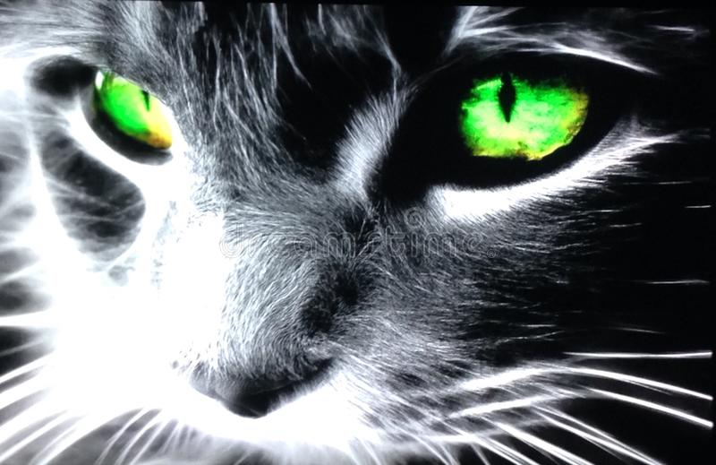 Verde afortunado imagen de archivo