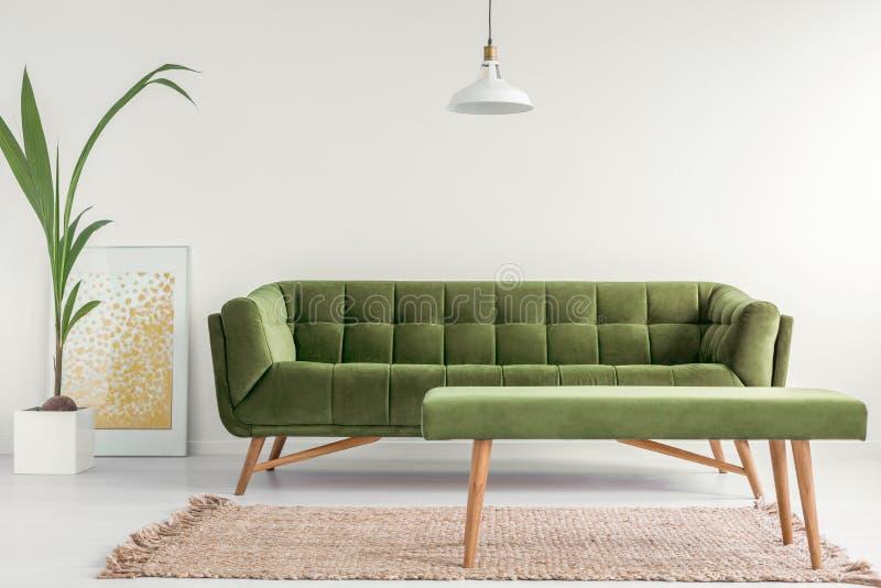 Verde azeitona, canapé à moda e um banco estofado em um interior brilhante da sala de visitas com paredes brancas e uma planta Fo foto de stock royalty free