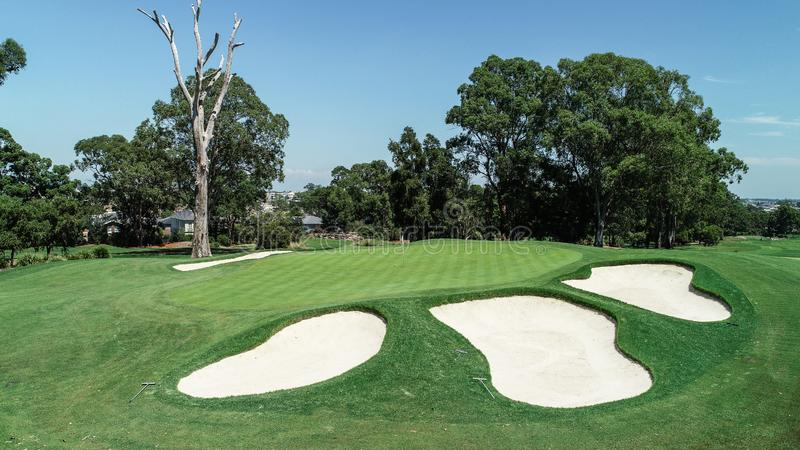 Verde com dep?sitos da areia, bandeira do campo de golfe, ?rvores, grama verde contra o c?u azul imagem de stock royalty free