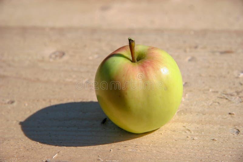 Verde con le bugie rosse della mela su una barra di legno un giorno soleggiato Fuoco selettivo fotografia stock libera da diritti