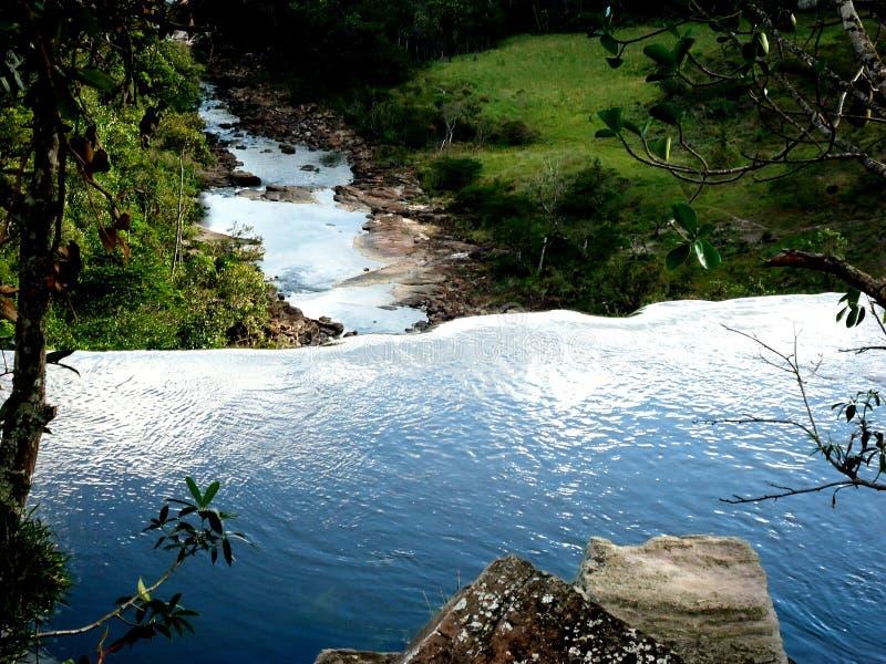 verde da Venezuela de amazon do savana da cachoeira da água grande imagem de stock royalty free