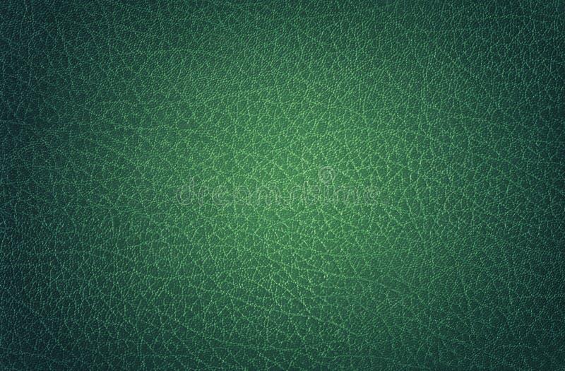 Verde de cuero, Punto-encendido foto de archivo libre de regalías