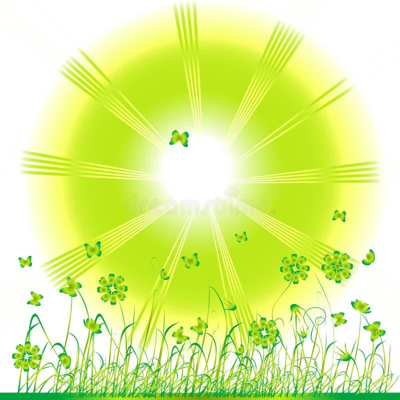 Verde de grama, fundo do verão ilustração royalty free