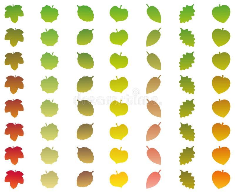 Verde De La Caída De Los Grados Del Cambio Del Color De Las Hojas ...