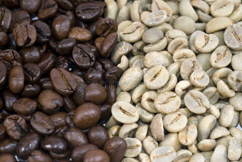 Verde de los granos de café y asado foto de archivo