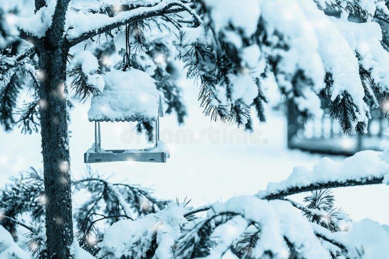 Verde de madeira do close-up do alimentador do pássaro do inverno em ramos coníferos sempre-verdes do abeto em um parque nevado imagem de stock royalty free