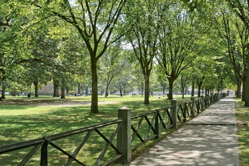 Verde de New Haven foto de archivo libre de regalías