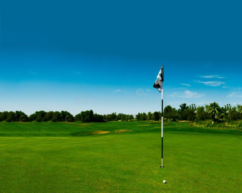 Verde del campo da golf con la bandiera a quadretti fotografie stock libere da diritti