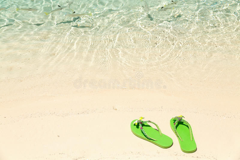 """Verde del concept†tropical de las vacaciones el"""" flip-flops en un océano arenoso sea fotos de archivo"""