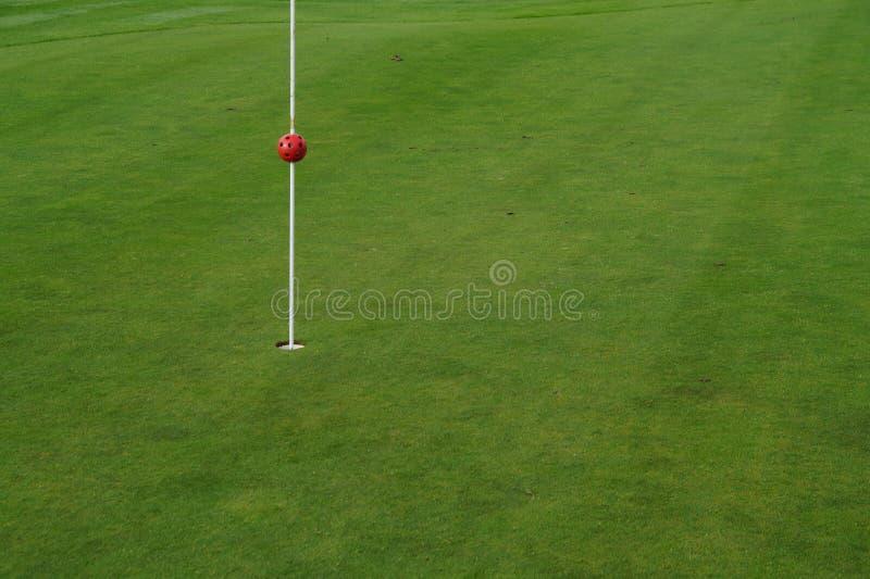 Verde del golf fotos de archivo