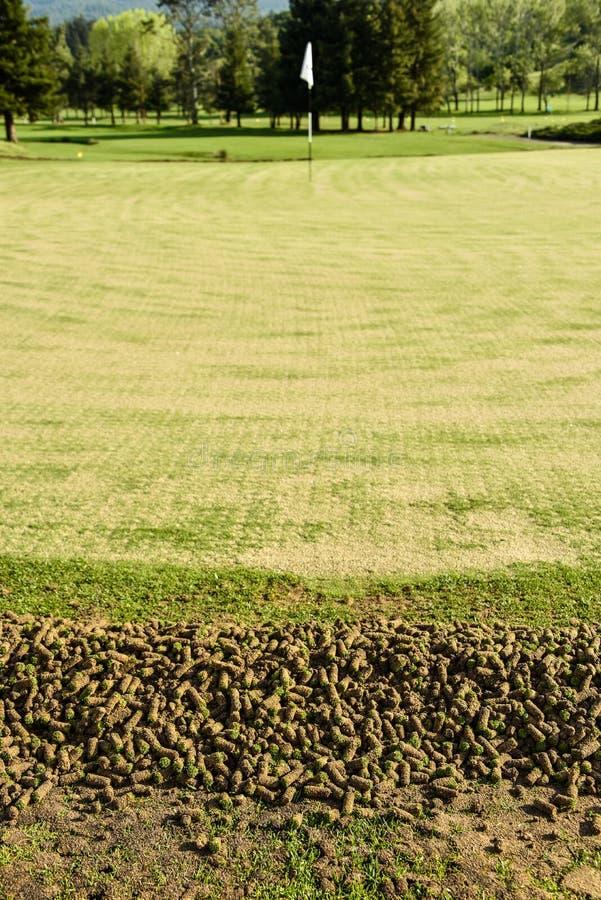 Verde del golf durante corazones que muestran de proceso de la aireación fotos de archivo libres de regalías