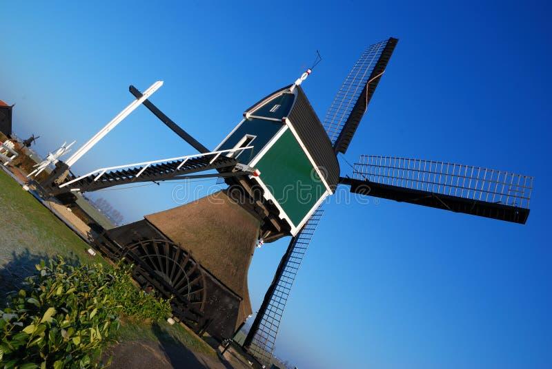 Verde del molino de viento fotografía de archivo libre de regalías