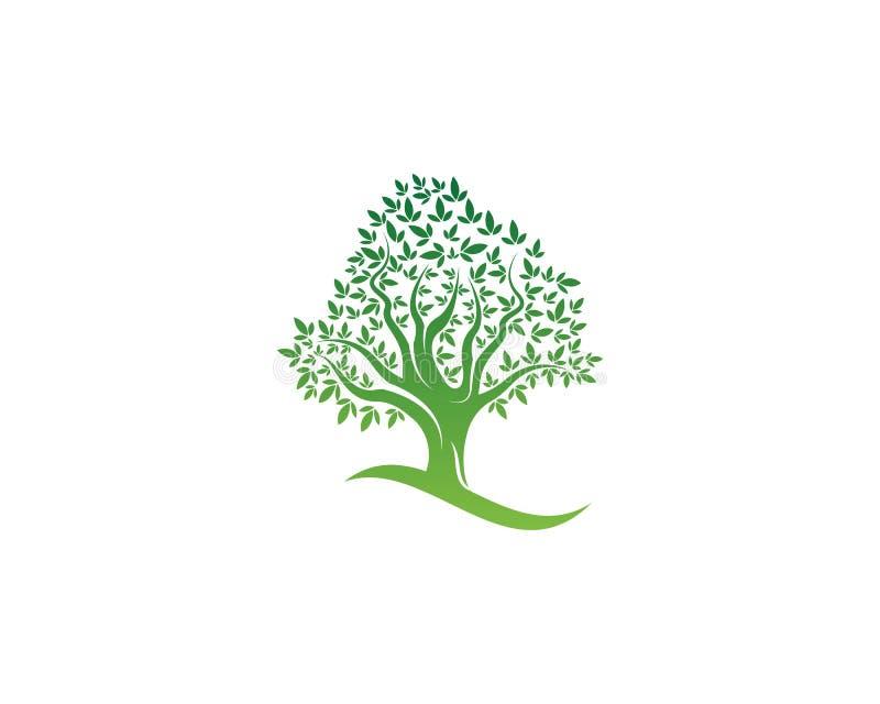 Verde del vector de la naturaleza del elemento de la ecología del logotipo de la hoja del árbol ilustración del vector