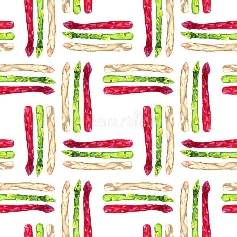 Verde dell'asparago, germoglio porpora e bianco rosso, modello senza cuciture illustrazione vettoriale