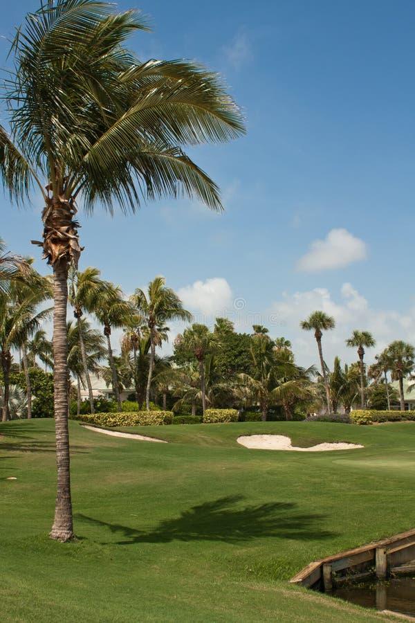 Verde di terreno da golf in Florida 4 fotografie stock libere da diritti