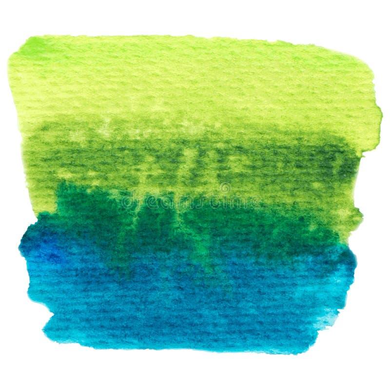 Verde di vettore e struttura blu della pittura isolati sull'insegna bianco- dell'acquerello per la vostra progettazione illustrazione vettoriale