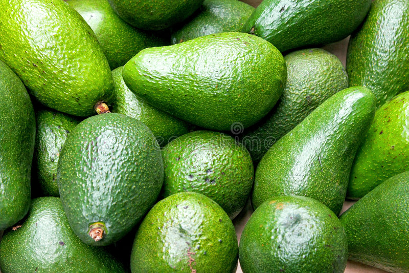 Verde do abacate foto de stock royalty free