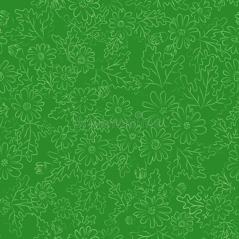 Verde do fundo da margarida foto de stock