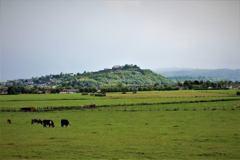 Verde e luxúria Stirling Scotland imagens de stock