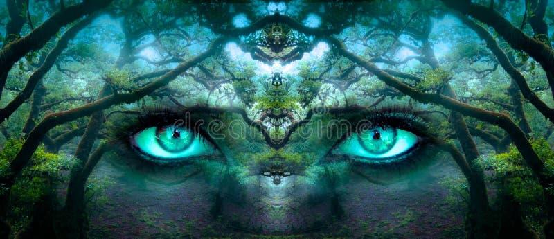 Verde, ecosistema, bosque, árbol