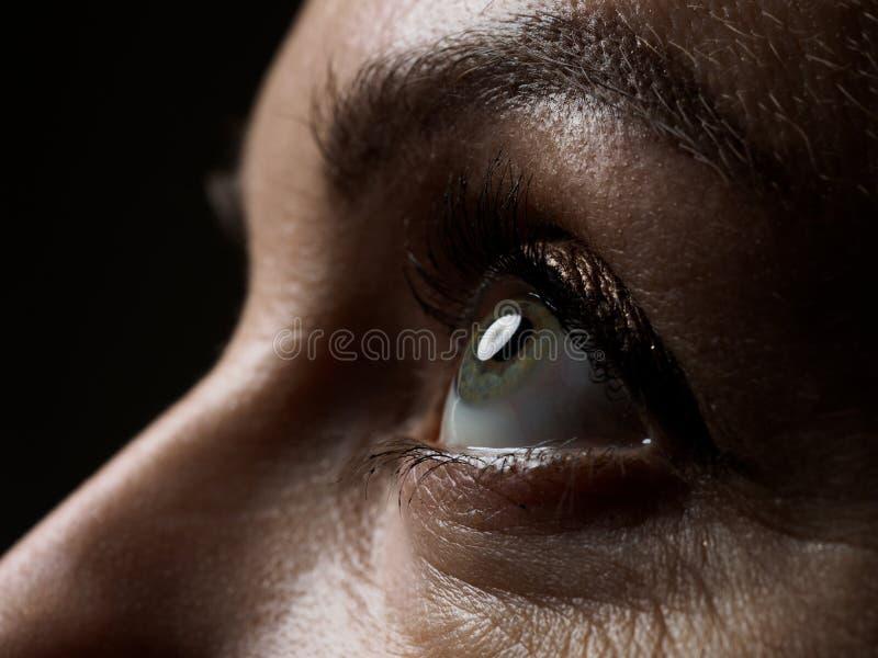Verde esquerdo fêmea close up colorido do extremo do olho imagem de stock royalty free