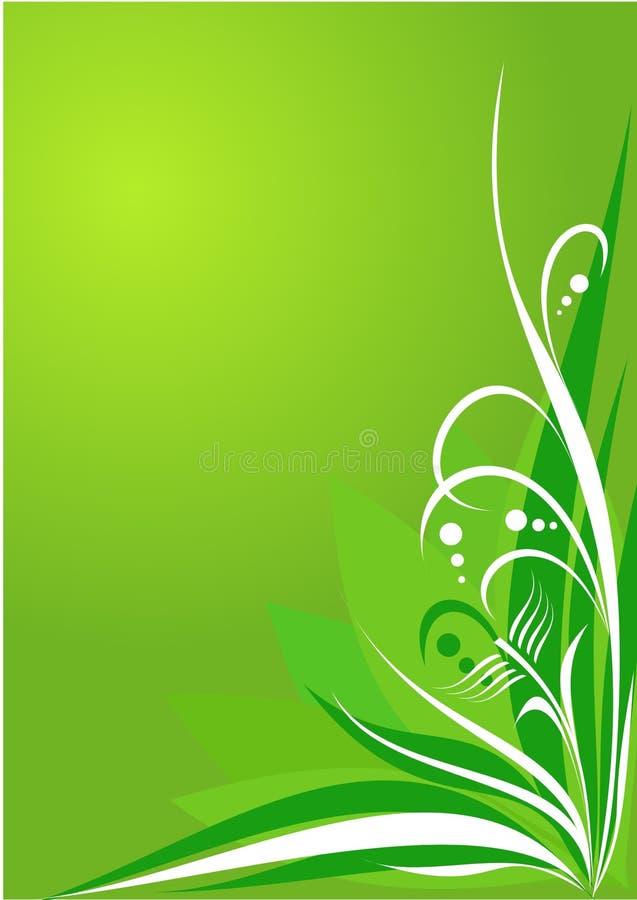 Verde floral do fundo ilustração do vetor