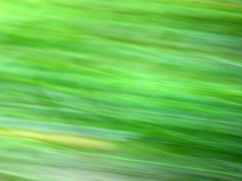 Download Verde, Fondo De La Ecología Imagen de archivo - Imagen de hermoso, foco: 44856199