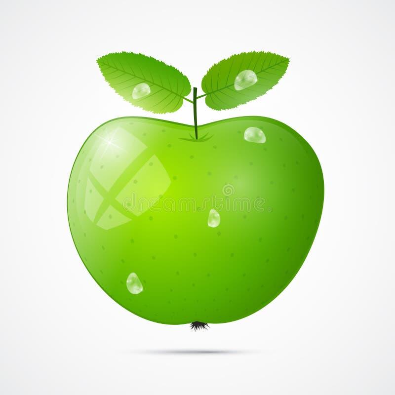Verde fresco Apple do vetor com gotas da água ilustração stock
