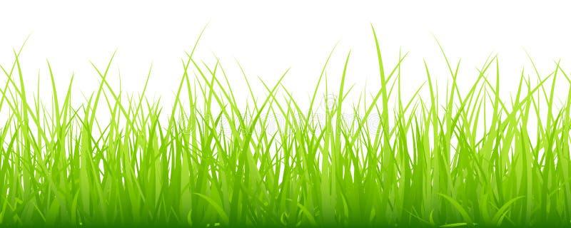 Verde horizontal de la bandera del prado grande libre illustration